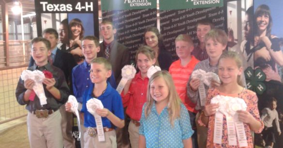 Bandera 4-H Livestock Judging Teams